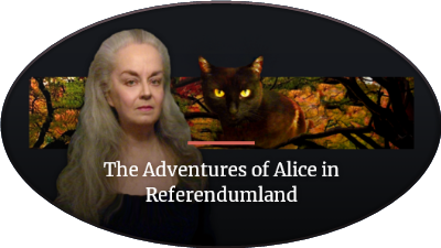 Alice in Referendumland
