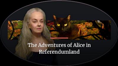 Alice in Referendumland